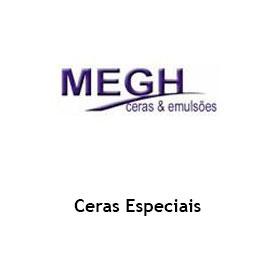 logo-slide-megh-novo